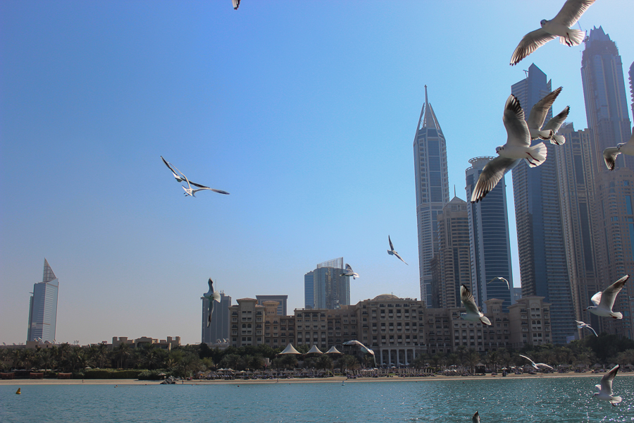 clutch and carry on - uk travel blogger - dubai travel blog - dubai yacht tour - sabrina chakici-51