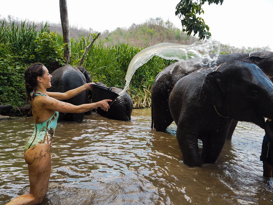 The Elephant Nature Park, Chiang Mai - Clutch & Carry-On