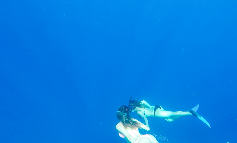 Sabrina Chakici - clutchandcarryon.com - Swiming with Dolphins Mauritius (17 of 20)