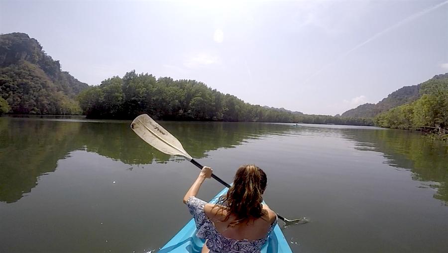 Mangrove kayacking langkawi malaysia