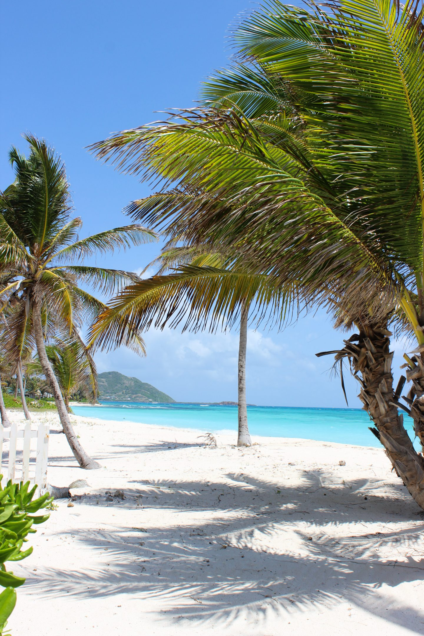 Clutch and carry on - UK Travel blogger - palm island resort, grenadines (108 of 361)