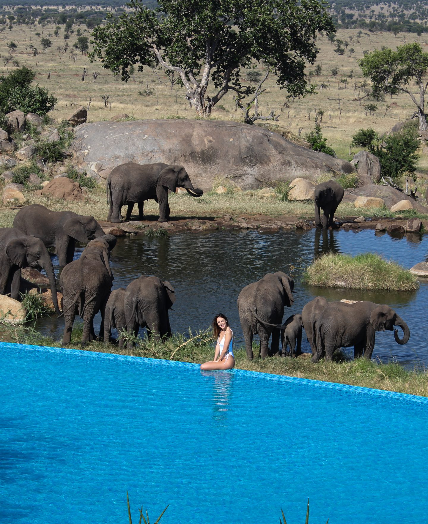 Four Seasons Serengeti, best safari in the world