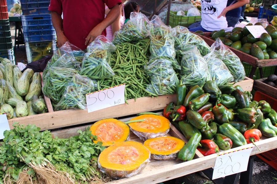 24 hour guide to san jose, costa rica