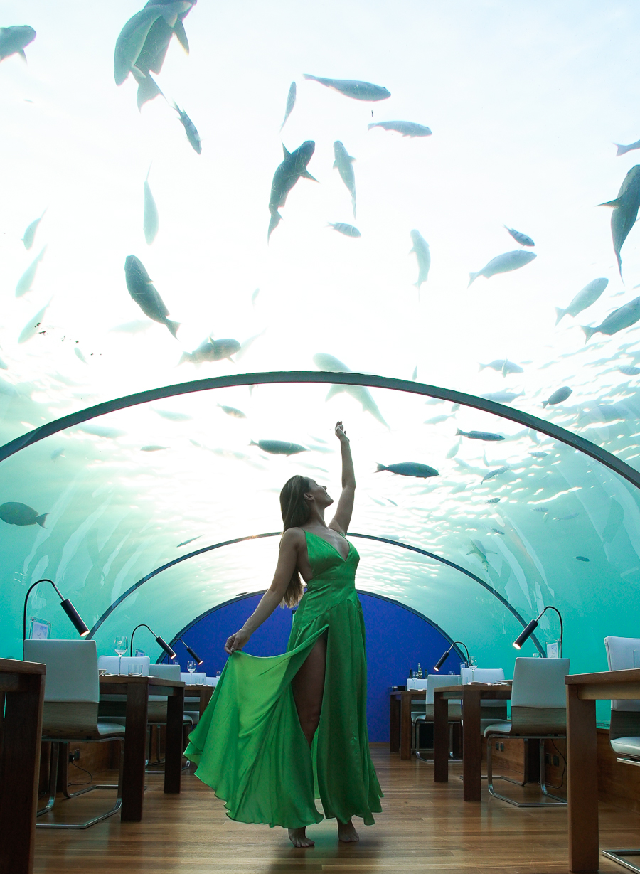 Ithaa The Spellbounding Underwater Restaurant Clutch CarryOn - Take a look inside europes first underwater restaurant